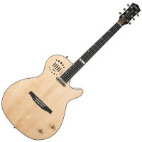 Godin 047895 Multiac Steel Natural HG With TRIC