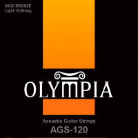 Olympia AGS-120 80/20 Bronze Acoustic Guitar 12 Strings 10/47